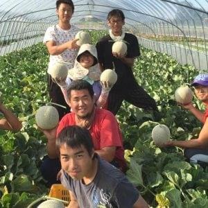 天間農産本舗FB2